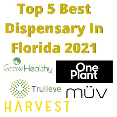 Top 5 Best Dispensary In Florida 2021