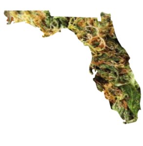 Florida Dispensary Deals And Discounts
